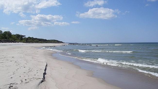 Okrzemki-i-otwornice-w-Baltyku