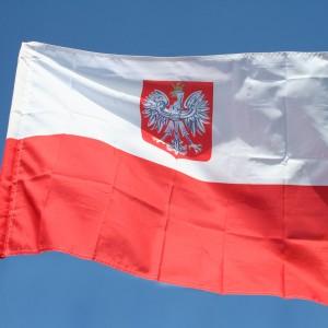 Pobyt-tolerowany-w-Polsce